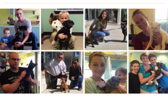 REDUCED FEE EVENT SENDS 80 CATS AND DOGS INTO LOVING HOMES.